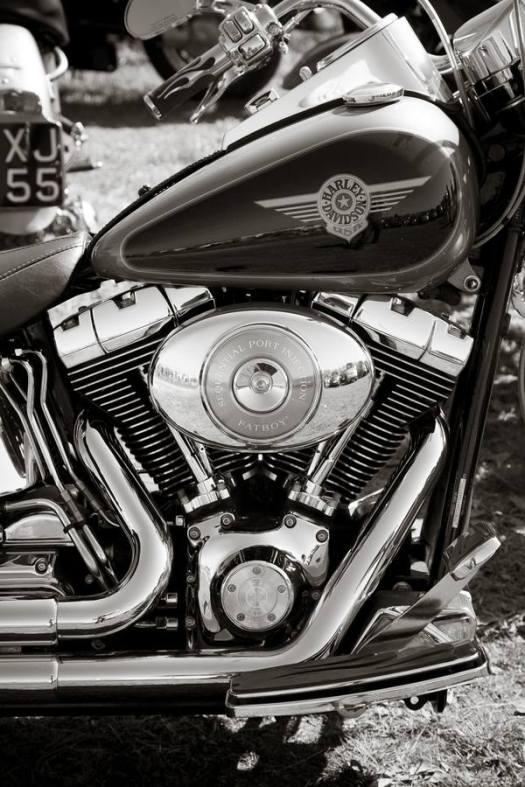 Harley Closeup