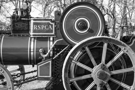 RSPCA tractor bw